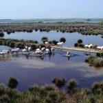 Italiens größter Regionalpark feiert den Frühling