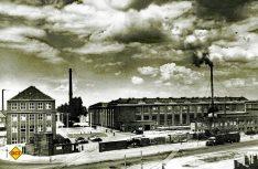 Luftbild des Düsseldorfer Werks aus dem Jahr 1951. (Foto: Mercedes-Benz)