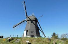 Ist noch heute aktiv – die restaurierte Windmühle hinter dem Keramik Café Vennebjerg Mölle. (Foto: hcb)