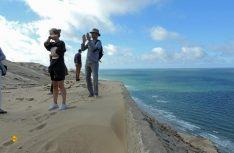 Wellen, Sand und Wind sorgen für stete Bewegung – die Steilküste Nordjütlands unterliegt einer dauernden Veränderung. (Foto: hcb)