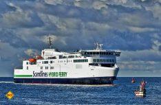 Mit modernen und umweltgerechten Fähren bringt die Fährgesellschaft Scandlines die Gäste nach Dänemark. (Foto: Scandlines)