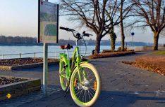 Hochwertig und stabil: Der Alu-Rahmen des Electra E-Bikes. (Foto: det)