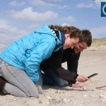 Strandgut mit der Smartphone-App erkunden