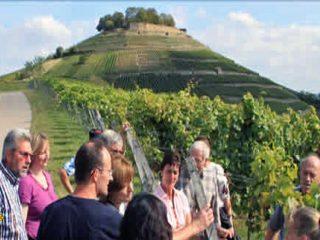 Baden-Württembergs Winzer bieten bei 120 Veranstaltungen Wein, Kultur und Schlemmen im Wonnemonat Mai. (Foto: Wein -Kultur-Festival)
