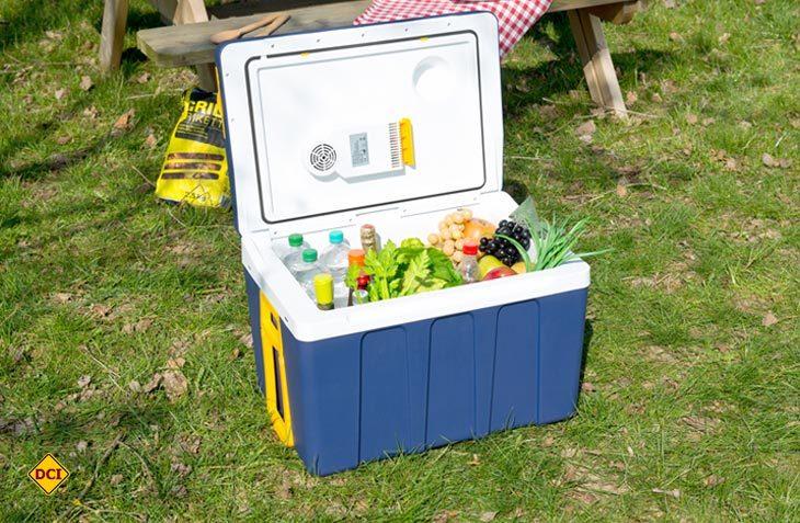 Ob gekühlt oder erwärmt, die thermoelektrische Trolley-Box Xcase von Pearl ist für Camping, Sport und Urlaub eine sichere Bank. (Foto: Pearl)