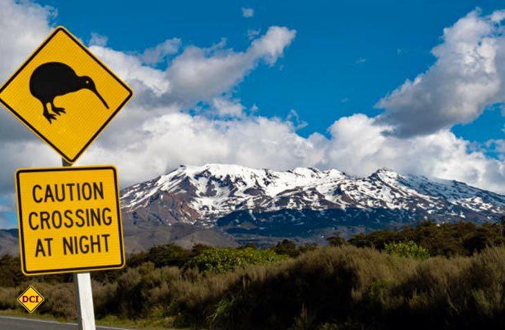 Roadtrip im Land der Kiwis – McRent eröffnet erste Mietstationen in Neuseeland. (Foto: DCI)Roadtrip im Land der Kiwis – McRent eröffnet erste Mietstationen in Neuseeland. (Foto: DCI)