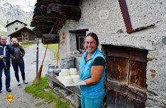 Nicht jedermanns Geschmack, aber frisch, würzig und mit viel Mühe in Handarbeit hergestellt – Ziegenkäse aus dem Bio-Hof in Isola (Foto: hcb)