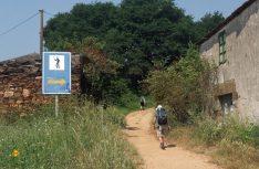 Santiago ist nicht mehr weit: Die Pilger kurz vor dem Ziel. (Foto: Meurer)