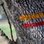 Auf Schusters Rappen durch Portugal – Wandern durch den Alentejo