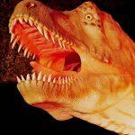Herbstfest im Dinosaurierpark Teufelsschlucht