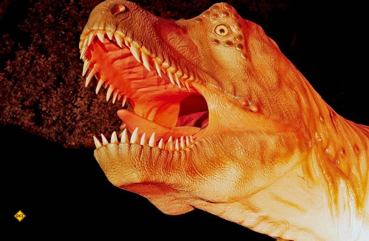Bild 1 Dinopark: Machen die Urzeittiere noch schauriger - farbige Illuminationen im Dinosaurierpark in der Eifel (Foto: Dinopark Teufelsschlucht)