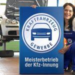 Kfz-Gewerbe fordert nationale  Nachrüst-Verordnung für ältere Diesel