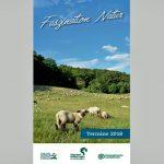 Faszination Natur in der Solling-Vogler-Region – Broschüre liegt für 2018 bereit