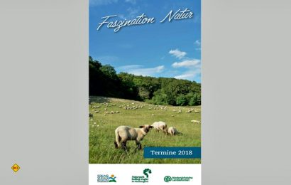 Die Neuauflage der Broschüre Faszination Natur mit allen Terminen in und um die Natur in der Solling-Vogler-Region im Weserbergland. (Foto: SVR)