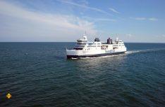 Begegnung auf Hoher See: Scandlines bedient die Vogelfluglinie nach Schweden im Schnellzugstakt. (Foto: Scandlines)
