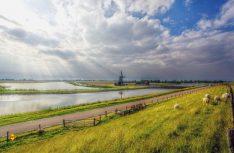 Impression der niederländischen Insel Texel. (Foto: Pixabay)
