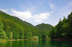 Stressgeplagte Städter finden in der üppigen Natur Montenegros Ruhe und Erholung. (Foto: det)
