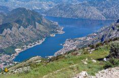 Die auch für Wohnmobile geeignete Panoramastraße ist ein Muss für alle Besucher Montenegros. (Foto: det)