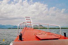 Albanien in Sicht: Auf den Skadar-See ist die Grenze zum Nachbarland Albanien. (Foto: det)