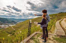 Wein, viel Natur und tolle Wanderwege finden sich an den Hängen der Rhone. (Foto: Cotes du Rhone)