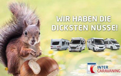 Hier muss auch das Eichhörnchen nicht lange suchen - InterCaravaning präsentiert die Spitzenmodelle für die kommende Urlaubssaison (Foto: InterCaravaning)
