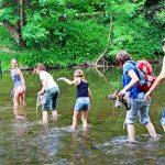 Ab in die Natur – Naturpark-Wandertag 2018