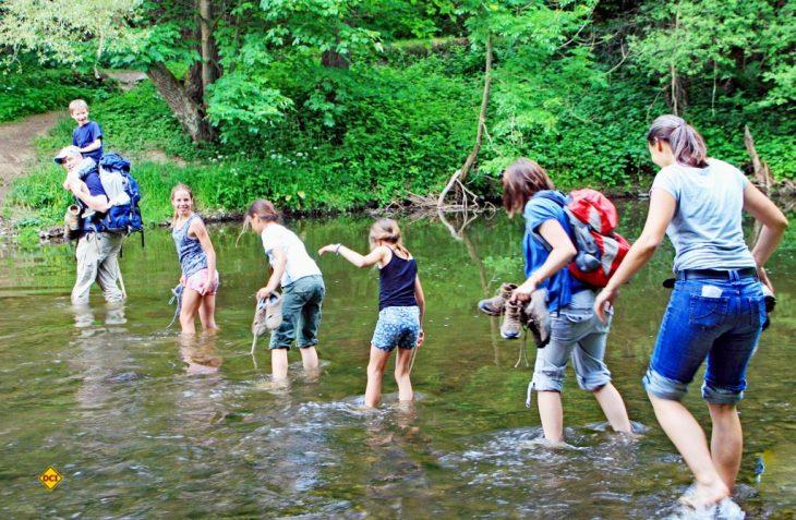 Gemeinsamse Naturerlebnis für Groß und Klein: Der Naturpark-Wandertag 2018. (Foto: VDN(Liesen)