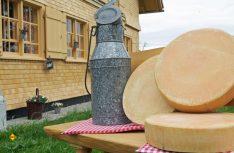 """Auf der """"Allgäuer Käsestraße"""" ist im wahrsten Wortsinn alles Käse. Die 220 Kilometer lange Route gehört zu den wichtigen deutschen Genuss-Routen. (Foto: Westallgäu Tourismus e. V./T. Gretler/J. Waffenschmidt)"""