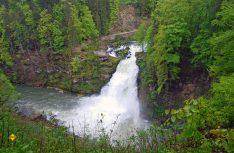Freier Fall – 27 Meter donnert der Doubs-Wasserfall nahe Villers-le-Lac in die Tiefe. (Foto: hcb/D.C.I.)