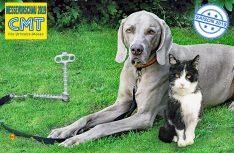 Sicherer Halt für Haustiere ohne Verletzungsgefahr mit dem Haltesystem von Peggy Peg.(Foto: Peggy Peg)