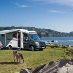 Abenteurer auf vier Pfoten – Neun Campingutensilien von Movera für Reisen mit dem Hund