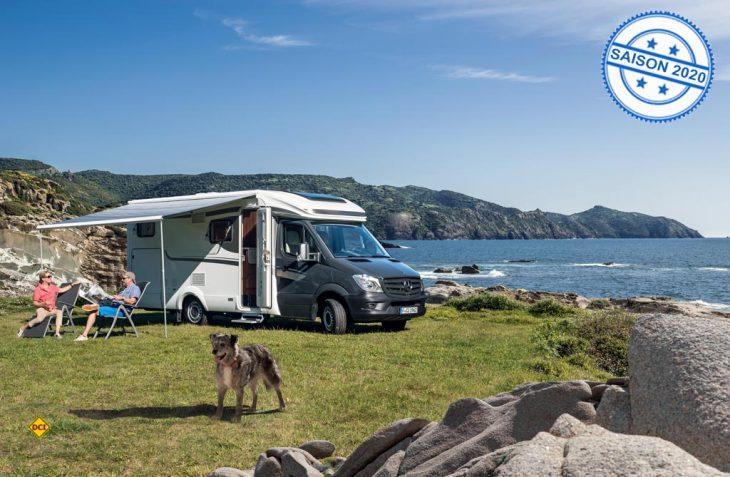 Für die Urlaubsreise mit Hund im Wohnmobil oder Caravan-Gespann können praktische Untensilien das Leben an Bord erleichtern. (Foto: CIVD)