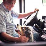 Agilitykurse, Wannenbad und Hunde-Pool – Die 5 schönsten Campingplätze für Hunde