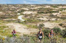Für Wanderer und Läufer: Anfang Oktober findet die Elf-Strände-Tour zwischen Bloemendaal und Hoek van Holland im Nationalpark Hollandse Duinen statt. (Foto: NBTC)