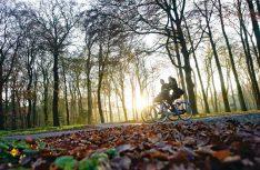 Im niederländischen Nationalpark De Hoge Veluwe gehen Besucher auf eine Entdeckungsreise durch die Natur. (Foto: NBTC)
