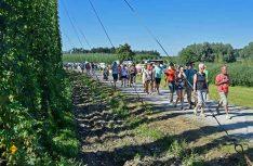 Das Hopfengut No20 in Tettnang bietet Führungen und Seminare zum Thema Hopfen an. (Foto: Blanz)