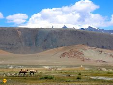 Gehören die schneebedeckten Berge zum Ural? Oder zum Himalaya? Egal, Hauptsache Asien! (Foto: Abert/abenteuerosten.de)