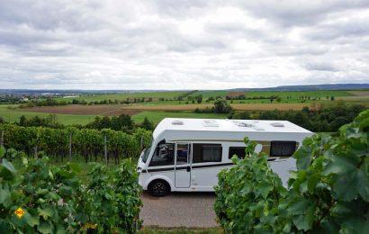 Das Reiseziel Kraichgau zieht sich als wunderschönes Weinanbaugebiet mitten durch Baden-Württemberg, vorbei an Sinsheim, Heilbronn und Pforzheim. (Foto: Carado)