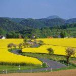 Ratgeber Reise – Die Romantische Straße feiert 70 Jahre