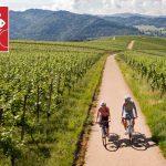 Tipp – Genießerstrecke für Radfahrer – Der neue Badische Weinradweg