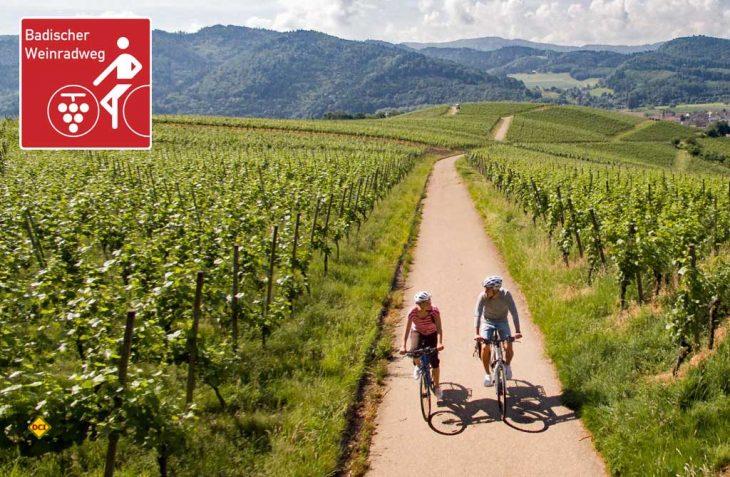 Der Badische Weinradweg verbindet auf rund 460 Kilometer von Basel bis Weinheim die badischen Weinregionen Markgräflerland, Kaiserstuhl, Tuniberg, Breisgau, Ortenau, Kraichgau und Badische Bergstraße. (Foto: Schwarzwald-Tourismus)