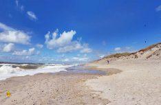 Mit Google-Street View digital an die schönsten Stellen von Dänemark wandern. (Foto: Visit Denmark)