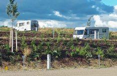 Der zweite Reisemobil-Stellplatz in Wismar ist ein großzügiger Wohnmobilpark mit über 150 Stellflächen. (Foto: Wismar Tourismus)