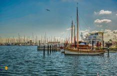 Wer historische Schiffe bevorzugt, fährt in den Museumshafen Wendtorf: Hier kann beispielsweise ein Wikingerschiff aus der Nähe betrachtet werden, ebenso wie ein Wadenboot, ein Krabbenkutter und eine Quase. (Foto: www.ostsee-schleswig-holstein.de/Oliver Franke)