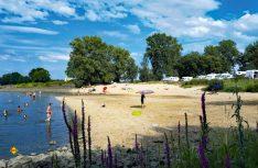Deutsche Stellplätze auch an den touristischen Hot-Spots sind gut besucht aber nicht komplett ausgebucht. Hier der Stellplatz Stover Strand in Drage an der Elbe. (Foto: Top Platz)
