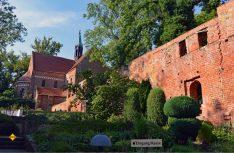 Absolut sehenswert: Die Klosterkirche und das Heimatmuseum im Klosterareal des ehemaligen Benediktiner-Klosters direkt am See. (Foto: det / D.C.I.)