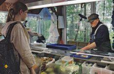 Fischerei am Arendsee: Die lachsartige Arendsee-Maräne wird von der Familie Kagel vom Maränenhof Zießau gefischt und geräuchert. (Foto: Tourist-Info Arendsee)