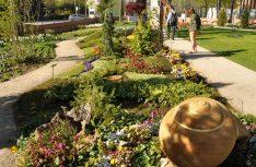 Havelberg ist eine grüne Stadt mit Gärten in und um die Altstadt und die Sakralbauten. (Foto: IMG)