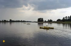 Die Gierseilfähre ist im Fluss mit Seilen verankert und wird nur durch die Flussgeschwindigkeit der Elbe angetrieben. (Foto: det / D.C.I.)
