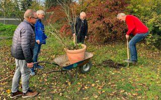 23. November 2019: Erste Baumpflanzung von Gründungsmitgliedern im Reisemobilhafen Wiesbaden. (Foto: WOHNmobil für Klimaschutz e.V.)